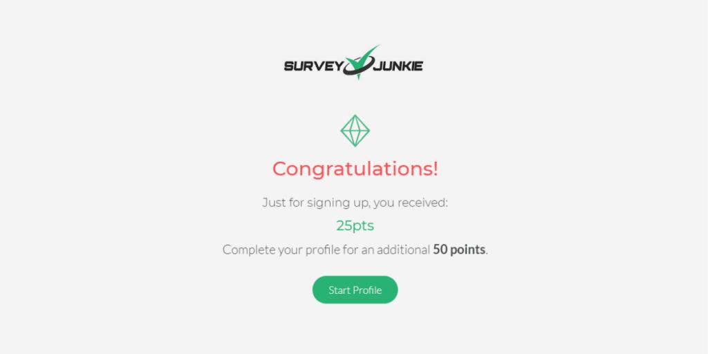 Survey Junkie Points