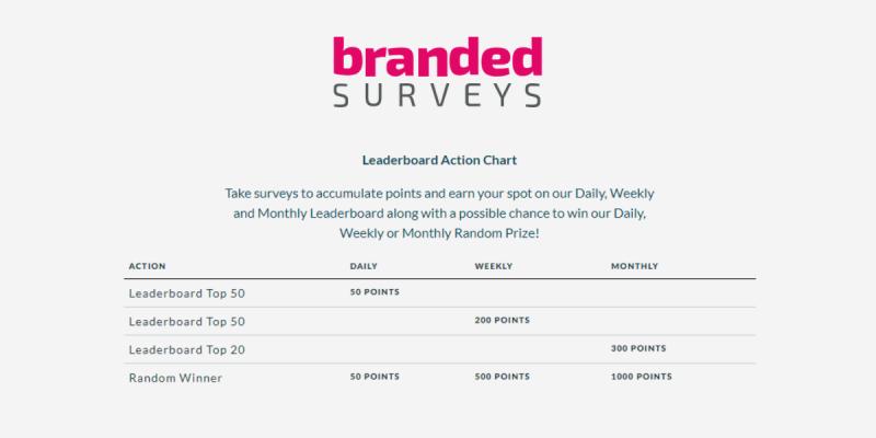 Branded Surveys Review Leaderboard