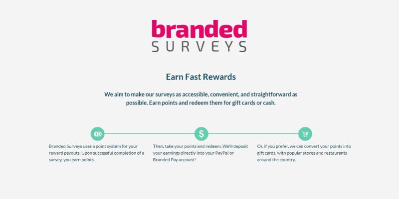How Branded Surveys Work